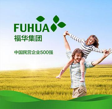 福华集团双语网站建设