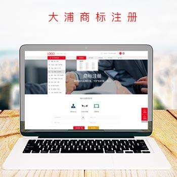 DAPU响应式官网设计